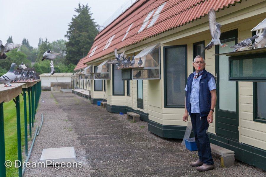 Serge van Elsacker sluit seizoen af in stijl: 1e Souppes Union Antwerpen tegen 1.119 duiven
