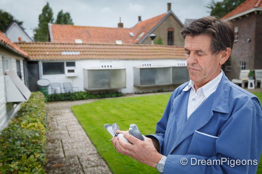 Antoon van der Burg schittert met 5 & 7 NPO Argenton tegen 7.374 duiven