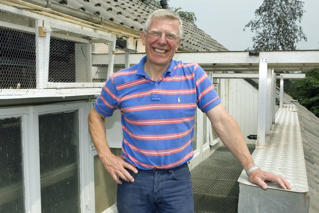 Willem de Bruijn, Reeuwijk - Jonge duif uit kwekers in overleg