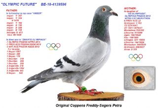 BE18-4139596 OLYMPIC FUTURE