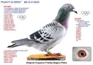 BE18-4139604 PLENTY OLYMPIC