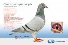 NL14-1699113 Direct son super couple � (cock)