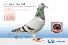 NL15-1429971 Grandson Der 261 - Richard van der Horst