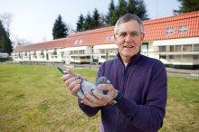 Van Elsacker-Jepsen – First class pigeon racing!!!